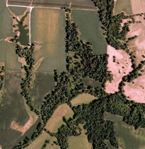 Buckeye Whitetail Preserve-Ohio Hunting Preserve