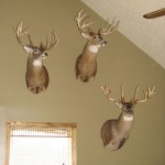 Trophy Wall of Fame-Ohio Lodging