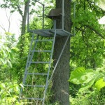 Buckeye Whitetail Ladder Stands-Ohio Trophy Deer Hunting